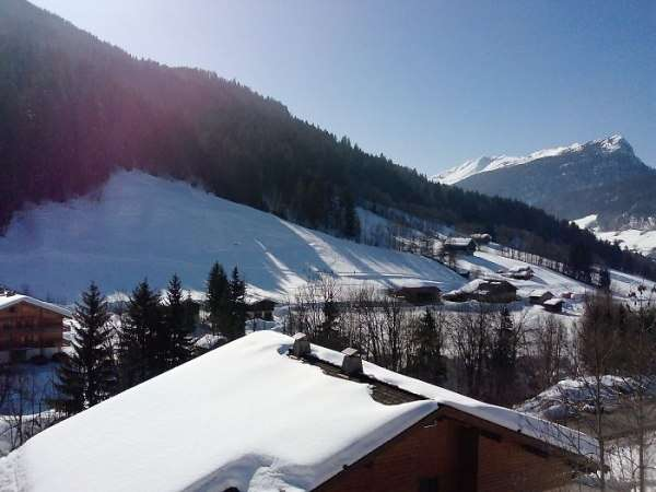location appartement 2 pieces carlines le grand bornand village