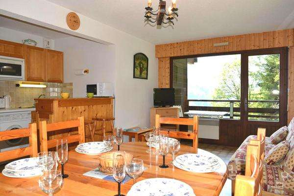 location appartement 2 pieces catalpa le grand bornand village