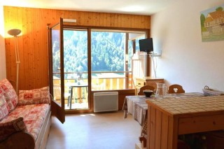 location studio Plein sud le Grand Bornand village